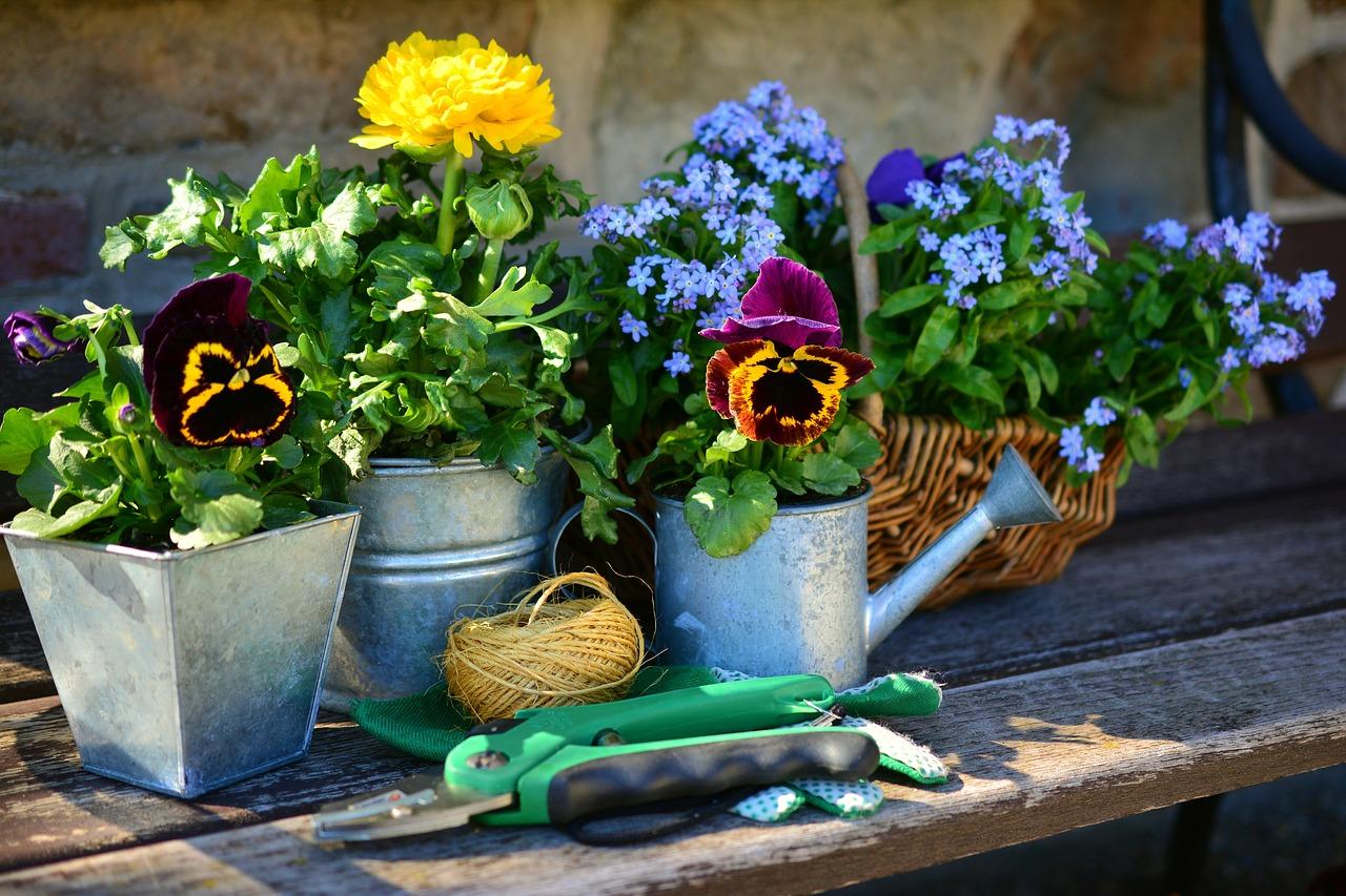 Blogs für den Gartenliebhaber – Teil 1
